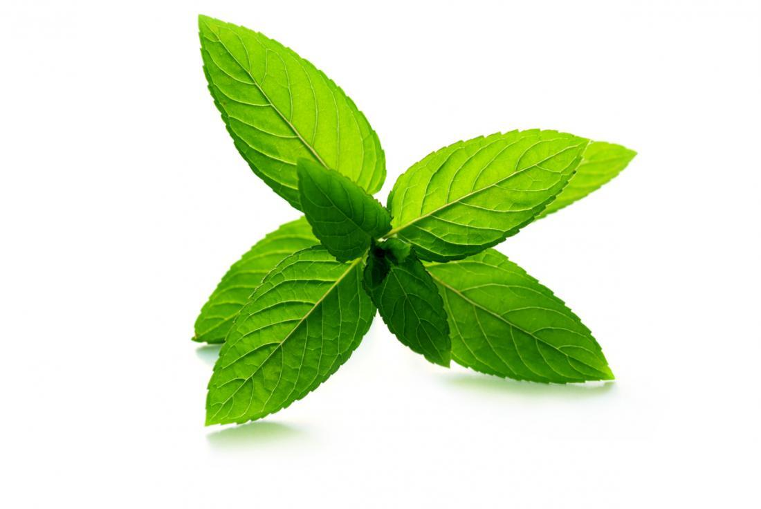 peppermint, essential oils, aromatherapy, Stress, Relief, Stress management, herbs, herbal therapy, natural, organic, holistic