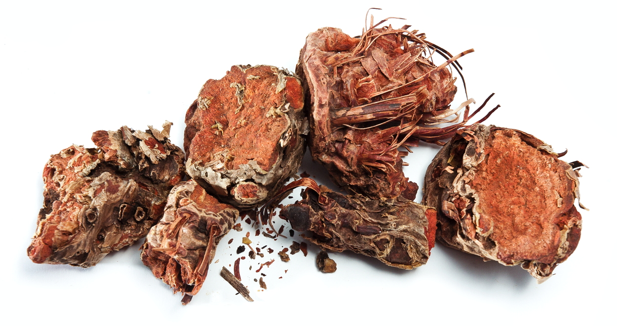 Rhodiola, root, Stress, Relief, Stress management, herbs, herbal therapy, natural, organic, holistic